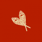 Snow shoes on a red background